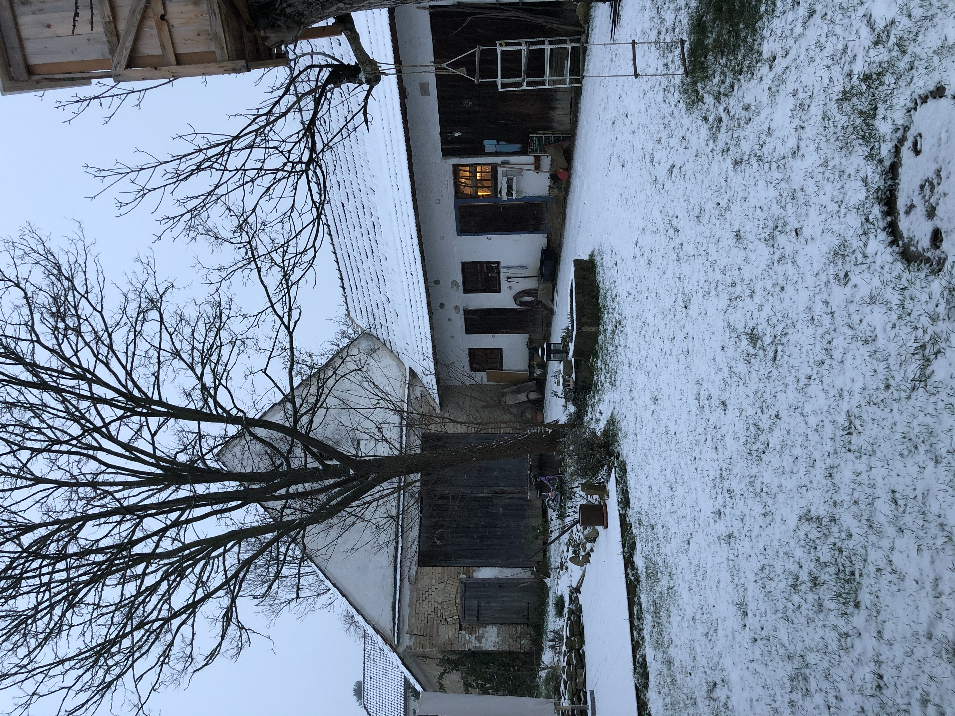 Neudlhof - Winterbeginn